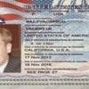 Кто такой глава секретных служб Украины Валентин Наливайченко