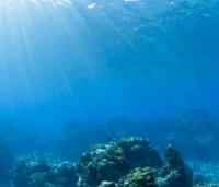 Дно мирового океана хранит несметные богатства, но вторжение туда экономики может стать гибельным.